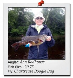 ann-rodhouse-20-incher