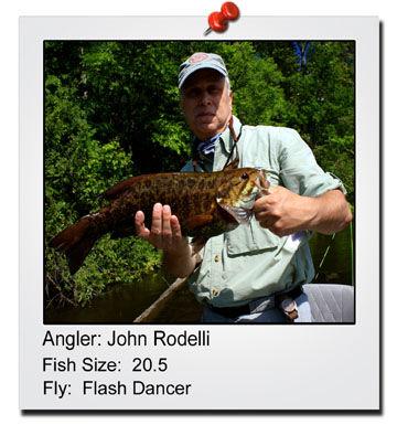 john-rodelli-20
