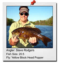 steve-rodgers-20-incher-finished