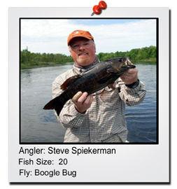 steve-spiekerman-20-incher-finished