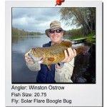 winston-ostrow-20