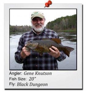 gene-knutson-20-inch-fish