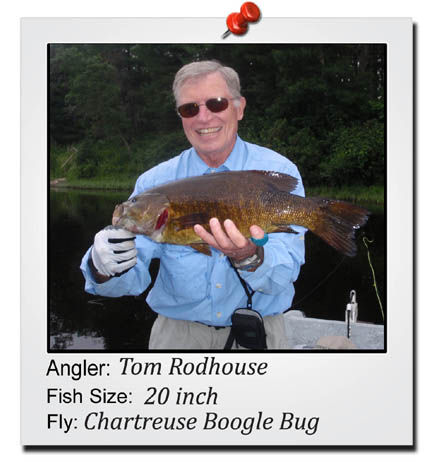 tom-rodhouse-20-inch